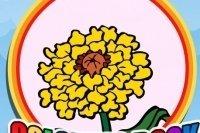 Colora i fiori