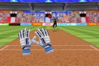 Cricket Challenge