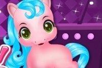 Prenditi cura del Baby Pony