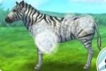 Prenditi cura della zebra