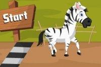 Zebra da Corsa